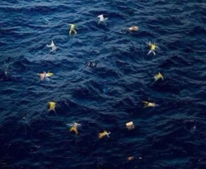 "Bansky ""Fake Europe"""